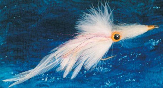Pêche à la mouche dans les eaux bleues III – Coryphène et wahoo