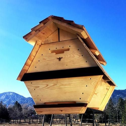 The Cathedral Hive Fully Assembled Bee Hive Bee Hive Plans Bee