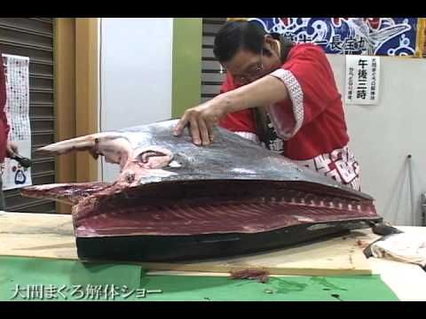 Tuna Cutting Show in Japan - まぐろ解体ショー. These type of cutting shows are performed at Sushi Restaurants in Japan. This show looks like was performed at fish market using famous blue fin tuna from Oma, Aomori. They explain each parts of tuna including Toro and head meat, which is considered to be better than toro.