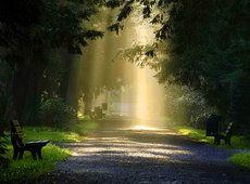 iluminando el camino