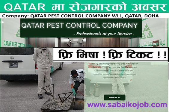 Salary 28 200 Company Qatar Pest Control Company Wll Qatar Doha Post No Of Vacancy Salary Qr Salary Npr Labourer Male 7 900 28 200 Lt No 2 Pest Control 8 Hour Work Day Doha