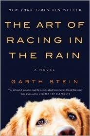 The Art of Racing in the Rain books-books-books