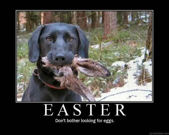 Easter is cancelled?