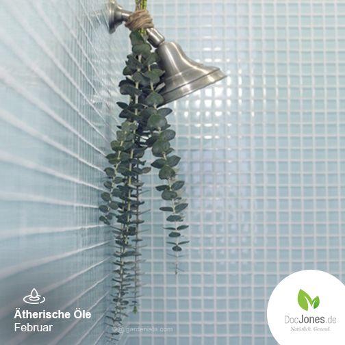 Das ätherische Öl des Eukalyptus wirkt bei Erkrankungen der Luftwege, löst Krämpfe und stillt den effektiv den Hustenreiz! Außerdem fördert es die Durchblutung und hilft daher gegen Frösteln und sorgt nebenbei für die Linderung von Rheuma-Schmerzen. Tipp: Für die morgendliche  Aromatherapie einfach ein paar Eukalyptuszweige in die Dusche hängen und den belebenden Duft genießen! Lies mehr über die Heilwirkung von Eukalyptusöl: http://bit.ly/Eukalyptusöl