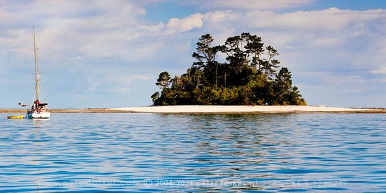 Beehive island in the Hauraki Gulf.  Supposed to be beautiful clear water.
