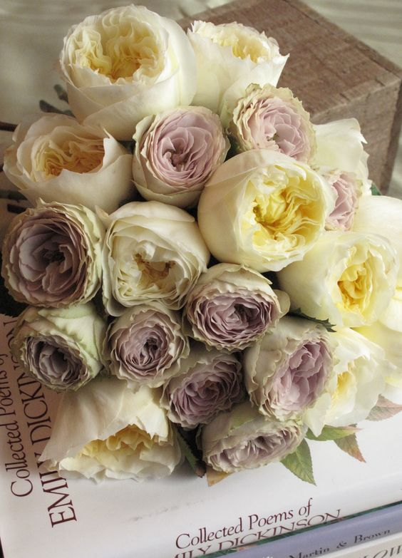 White and Lavender garden roses- there's something so romantic about these colors- way better than red roses in my opinion