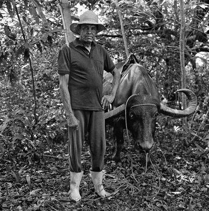 Arigó with Farabari (water buffalo), São Gerônimo ranch, Soure, Marajó Island, PA, 2011 by Edu Simões