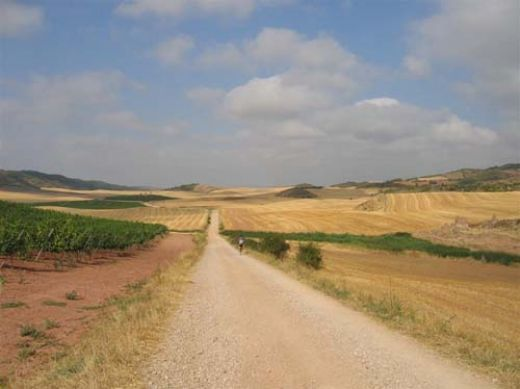 "Camino de Santiago, ""The Way of St James"", France  Spain"