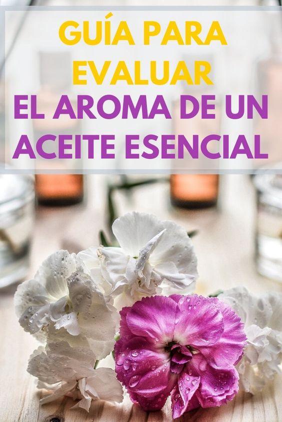 guia para evaluar el aroma de un aceite esencial