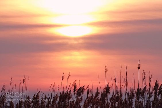 winter sunset by Joanna2012
