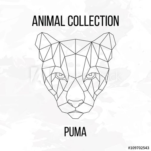 acheter un puma animal