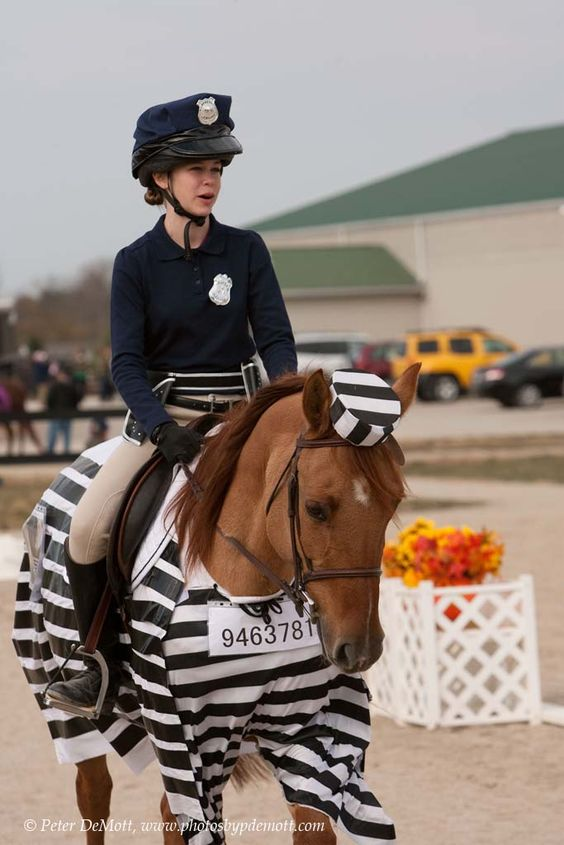 Umm the way my horse acts. This is a must for fair costume class..... Or at least an option!