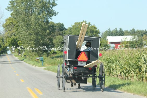 It's always interesting to see how the Amish haul their building supplies.