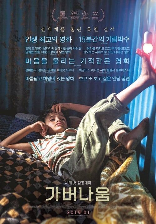 Capernaum Hela Pa Natet Dreamfilmen Hd Free Movies Online Capernaum Full Movies