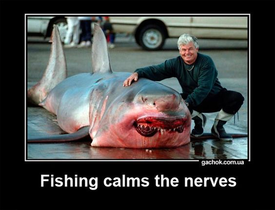 Funny Fishing Demotivator. Great White Shark