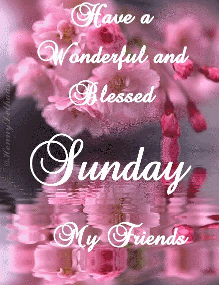 have a wonderful en blessed sunday my friends