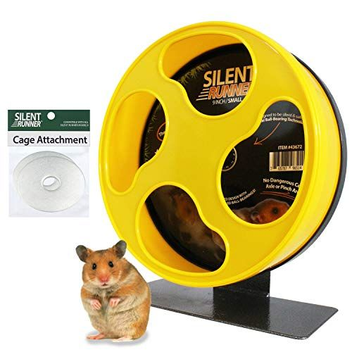 10 Best Hamster Wheel In 2020 Hamster Care Hamster Toys Small Pets
