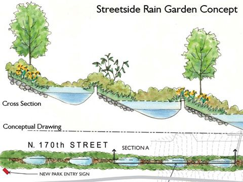 Rain garden rain and geoff lawton on pinterest for Rain garden design