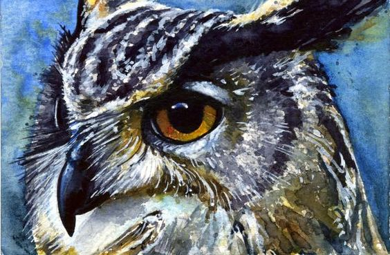 Owl Eyes Paintings Eyes of Owls No.25 Pai...