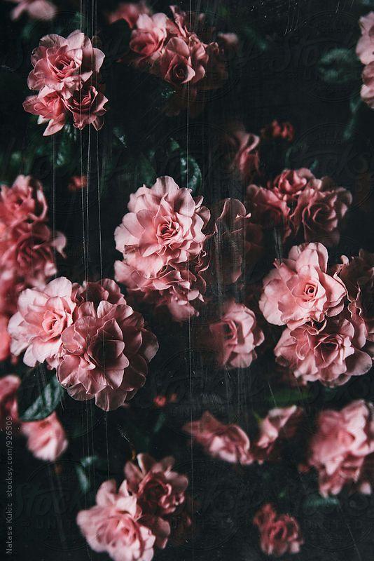 Vintage grainy scratchy flowery background