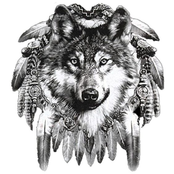 Tattoo oberarm tribal tattoo pictures to pin on pinterest - Image Detail For Ws 12593 Wolf Dreamcatcher Weiss W 246 Lfe