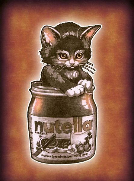Tim Shumate - Kitten Loves Nutella