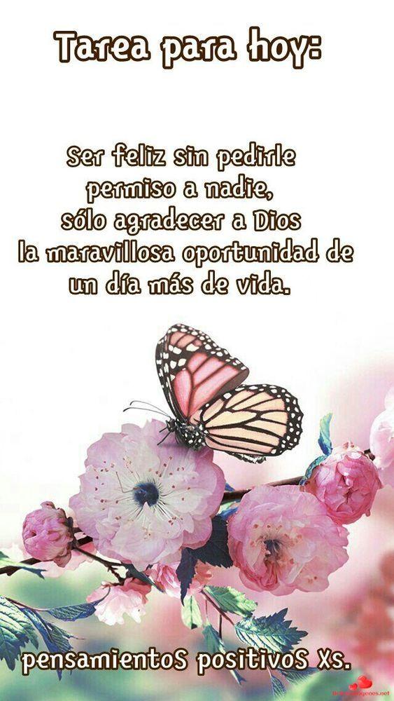 Buenos Dias Para Facebook Y Whatsapp 218 Mensajes De