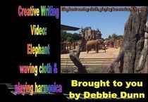 Creative writing video: Elephant waving red cloth at Knoxville Zoo