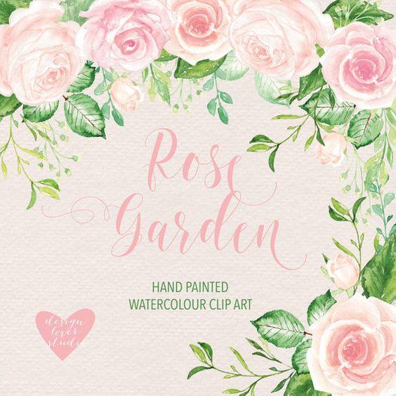 Aquarell Rose Blush Clipart Aquarell Blume von designloverstudio