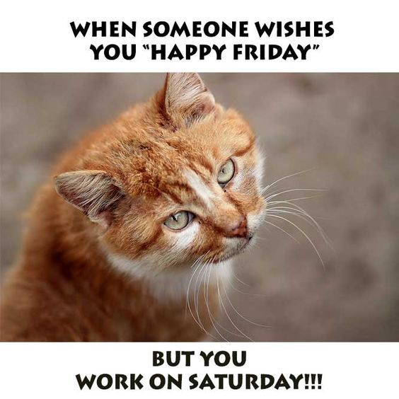 70 Funniest Friday Memes And Best Tgif Meme For The Weekend Funny Friday Memes Friday Humor Funny Memes