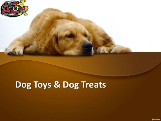 Keep Your Dog Hectic With Dog Toys And Dog Treats By Andy Coper Via Slideshare Cat Illnesses Pets Best Pet Insurance