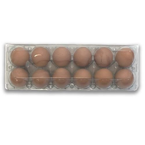 Clear Middle Split Plastic Egg Carton Quail Eggs This Egg Carton Splits In The Middle To Create 2 3x5 Egg Cartons Packed 100 P With Images Quail Eggs Plastic Eggs Quail