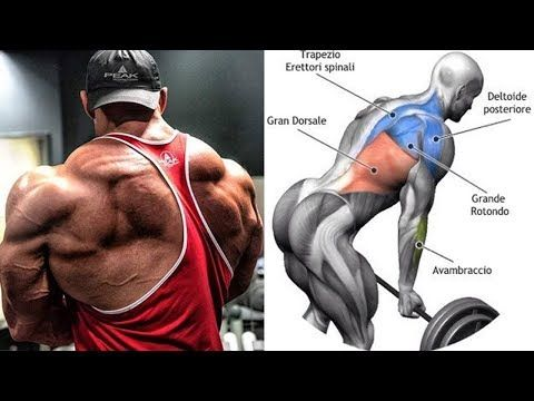 Back Workout أقوى 9 تمارين لتضخيم و وزيادة عرض عضلة الظهر Youtube Back Exercises Big Back Workout Best Shoulder Workout
