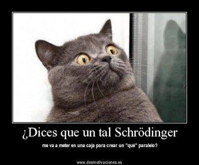 El gato de Schrödinger con humor fisico.