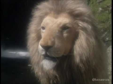 As Cronicas De Narnia A Cadeira De Prata Bbc 1990 3 Youtube