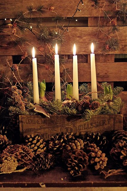 Beautiful Advent candles arranged in a vintage wood box with bulbs and greens and pine cones.  Perfect for natural rustic winter and Christmas decorating.: