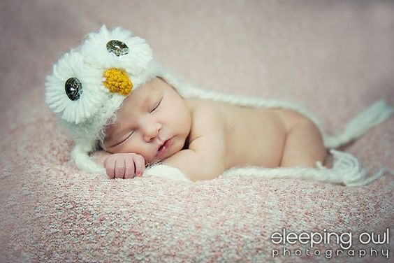 Snowy Owl- how sweet