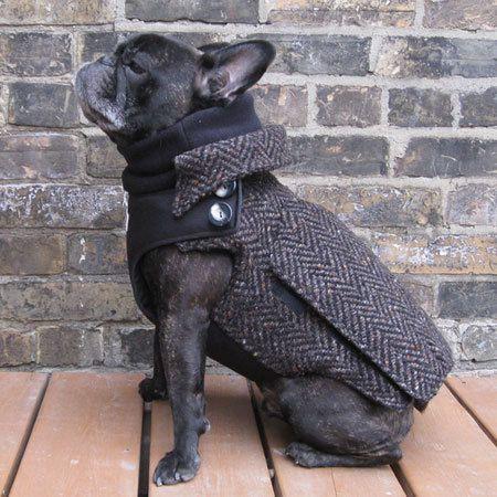 The City Coat  Adult Boys French Bulldog/Pug by BabiesAndBeasts, $149.99