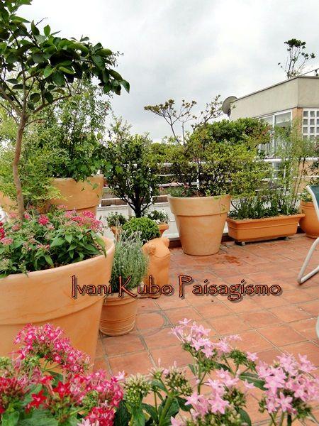 Ivani Kubo Paisagismo: Jardim em vasos