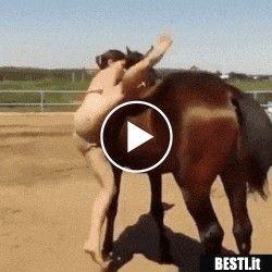 O cavalo mais raro e caro já encontrado