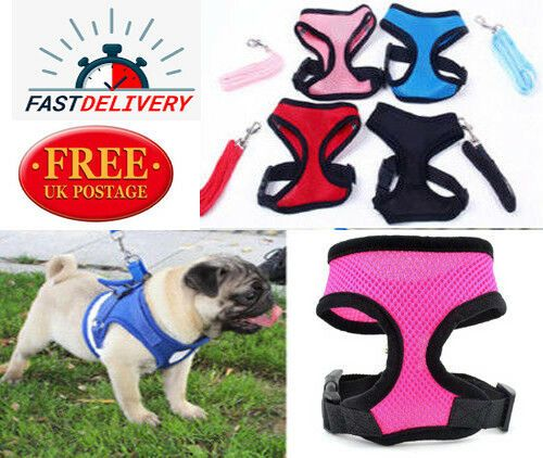 All Pet Dog Vest Harness Adjustable Reflective Padded Puppy Mesh