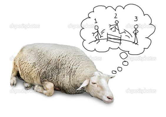 sleeping sheep counting humans - Google Search