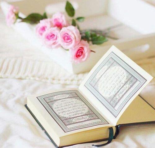 Goruntu Quran Wallpaper Islamic Gifts Quran