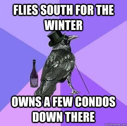 flies south for the winter owns a few condos down there