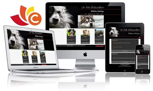 #Coming-PHP #Coming-Web #Tecnosud #Perpignan  Nouvelle réalisation de site sur la base de notre CMS Coming-PHP La principale particularité de Coming-PHP c'est un CMS plus souple, plus puissant, plus rapide et plus léger que s'il était écrit en Responsive web design.  Un poil d'éducation est spécialisé dans l'éducation canine à domicile Perpignan et son département le 66 Voir le site http://ecra.se/fX-0  Contactez-nous ! commercial@coming-web.com