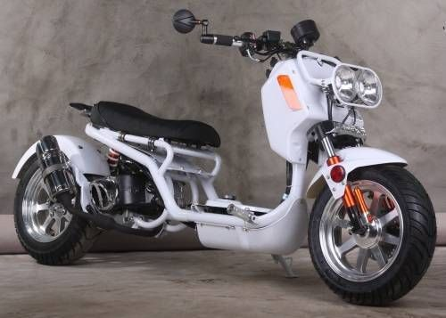 New 150cc Icebear Maddog Gen Iv Scooter In 2020 Gas Powered Scooters Scooter Moped