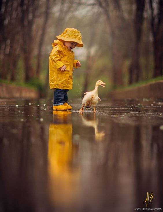 (Photograph Rainy Day by Jake Olson Studios)(via Pinterest: Discover and save creative ideas)
