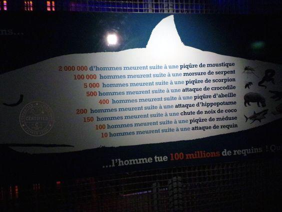 Aquarium, Saint-Malo, Bretagne