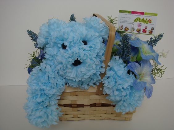 $35.00 Blue Teddy Bear Floral Basket. Http