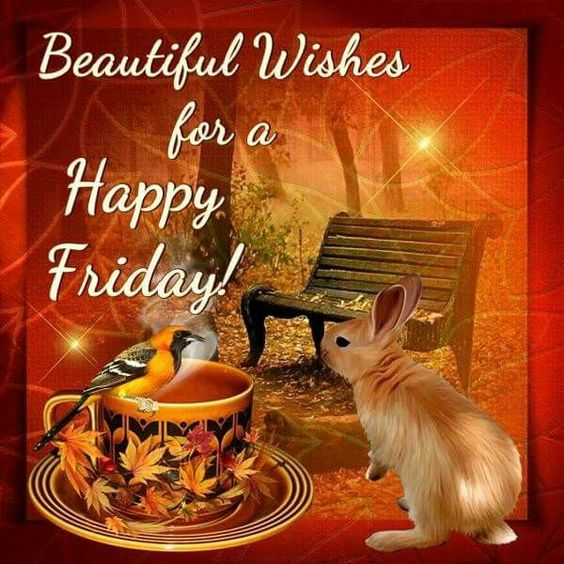 Beautiful Wishes For A Happy Friday! friday happy friday good morning happy friday quotes good morning friday friday pictures friday pic images friday picture images happy friday images: